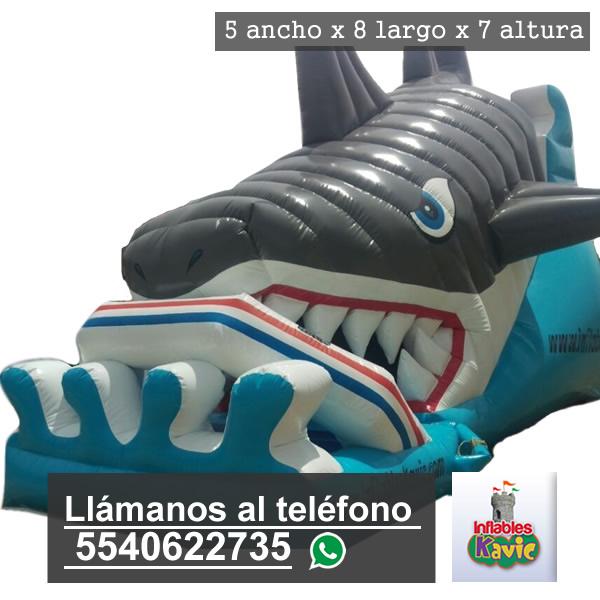 renta de juego inflable acuatico | el tiburon | Inflables Kavic