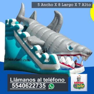 Renta de juegos inflables interlomas | acuaticos | adultos